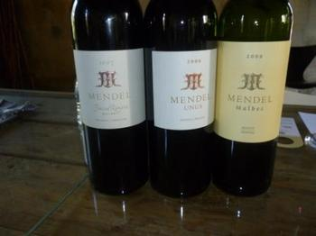 試飲したワイン.jpg